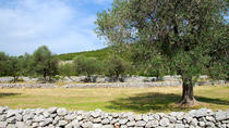 Lustica Peninsula: Organic Olive Farm Private Tour and Tastings, Kotor, Food Tours