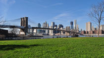 Brooklyn Bridge Bicycle Rental, Brooklyn, Day Cruises