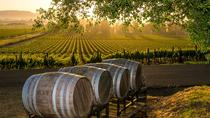 Birdie Wine Tour, San Antonio, Wine Tasting & Winery Tours