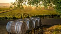Birdie Wine Tour in Fredericksburg, San Antonio, Wine Tasting & Winery Tours