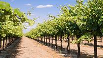 Par Wine Tour in Fredericksburg, San Antonio, Wine Tasting & Winery Tours