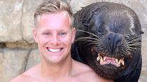 Sea Lion Encounter at Ocean World, Puerto Plata, Attraction Tickets