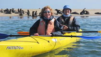 Kayaking and Sandwich Habour Guided Day Tour from Walvis Bay, Walvis Bay