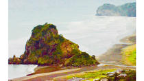 Auckland's Rainforest, Black Sand Beaches and Wilderness Trilogy Eco Tour, Auckland, Eco Tours