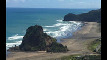 Auckland's Rainforest, Black Sand Beaches and Wilderness Trilogy Eco Tour, Auckland