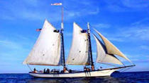 Schooner Appledore Key West Cruise, Key West, Sailing Trips