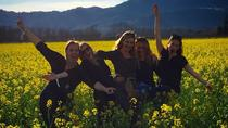 California Wine Tasting Pass, Stockton, Wine Tasting & Winery Tours