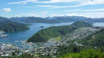 Full-Day Marlborough Scenic and Wine Tour from Picton, Picton, Wine Tasting & Winery Tours