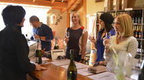 Half-Day Wine Tour from Picton, Picton, Wine Tasting & Winery Tours
