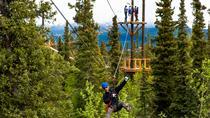 Denali Park Zipline Adventure, Denali National Park, Ziplines