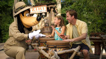 Disney's 1-Day Magic Your Way Ticket, Orlando, null