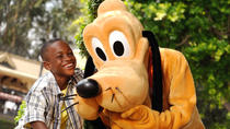 Disney's 2-Day Magic Your Way Ticket, Orlando, Private Sightseeing Tours