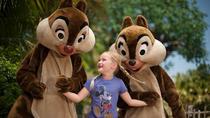 Disney's 3-Day Magic Your Way Ticket, Orlando