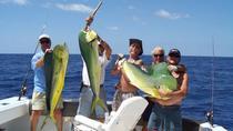 4-hour Marathon Offshore Fishing Trip, Islamorada