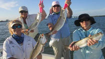 4-hour Miami Inshore Fishing trip, Miami, Fishing Charters & Tours