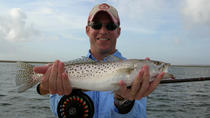 6-hour Fort Lauderdale Inshore Fishing trip, Fort Lauderdale, Fishing Charters & Tours