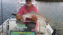8-Hour Fort Pierce Inshore Fishing Trip, West Palm Beach, Fishing Charters & Tours