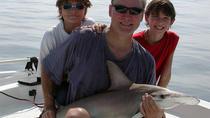 8-hour Jupiter Inshore Fishing Trip, West Palm Beach, Fishing Charters & Tours