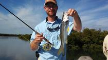 8-hour Pompano Beach Inshore Fishing trip, Fort Lauderdale, Fishing Charters & Tours