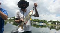 8-hour Tampa Inshore Fishing Trip, Tampa, Fishing Charters & Tours