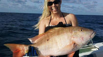 Marathon Reef Angelcharter, Key West, Fishing Charters & Tours