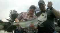 Naples Inshore Fishing Charter, Naples, Kayaking & Canoeing