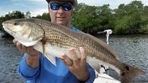 Sarasota Inshore Fishing Charter, Sarasota, Fishing Charters & Tours