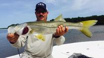 Tampa Inshore Fishing Charter, Tampa, Fishing Charters & Tours