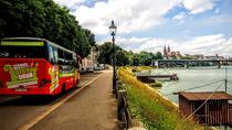 Sightseeing bustour door Bazel, Basel, Hop-on Hop-off Tours