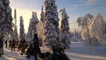 Arctic Snowmobile Tour to the Wilderness Lodge including Lunch by Campfire, Rovaniemi, Ski & Snow