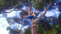 Mallorca Forestal Park Zipline Adventure, Mallorca, Theme Park Tickets & Tours
