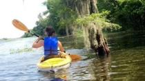 Paddle the Swamp - Canoe and Kayak Louisiana Bayou Tour, New Orleans