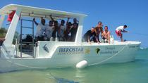 4 Tanks (2 pax) Certified Diving in Puerto Plata, Puerto Plata, Other Water Sports
