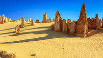 Full-Day Pinnacles Desert and Yanchep National Park Tour From Perth, Perth, Day Trips