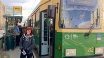 Helsinki Sustainable City Tour by Tram and Subway, Helsinki, Hop-on Hop-off Tours