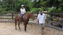 Natural dressage, Merida, Horseback Riding