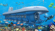 Atlantis Submarine Expedition - Grand Cayman, Cayman Islands, Swim with Dolphins