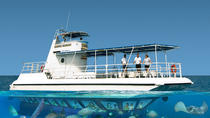 Grand Cayman Seaworld Observatory - Shipwreck and Fish Feeding Show, Cayman Islands, Submarine Tours