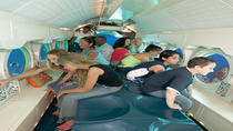 Grand Cayman Shore Excursion: Atlantis Submarine Expedition