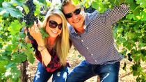 Private Winery Tour in Napa, Napa & Sonoma, Wine Tasting & Winery Tours