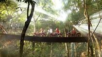 Emotions Native Park Admission Ticket: ATVs, Cenote and Ziplines, Playa del Carmen, Attraction...