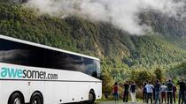 Milford Sound Day Trip from Queenstown by Coach, Cruise and Flight, クイーンズタウン