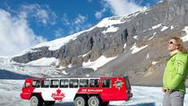 Athabasca Glacier Snow Trip from Banff, Banff, Day Trips
