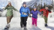 Snowshoeing Tour to the Paint Pots, Banff, 4WD, ATV & Off-Road Tours