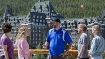 Summer Tour: Banff and its Wildlife, Banff, Nature & Wildlife