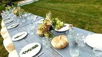 Hudson Valley Fall Foliage Wine and Local Cheese Tour, New York City, Day Trips