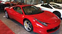 Ferrari or Lamborghini Driving Experience, Daytona Beach, Adrenaline & Extreme