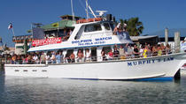 Dolphin Watch Eco Tour of South Padre Island, South Padre Island, Dolphin & Whale Watching