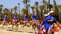 2-Hour Camel Ride in Marrakech, Marrakech, Nature & Wildlife