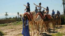 Marrakech Palmeraie 2-Hour Camel Ride, Marrakech, Nature & Wildlife